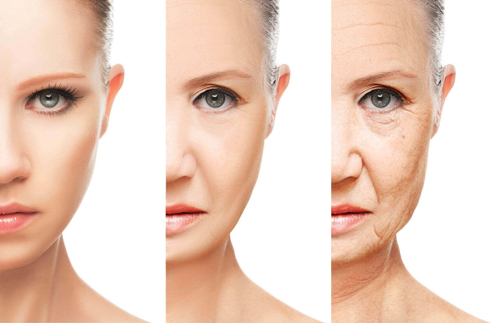 aloe vera contro l'invecchiamento