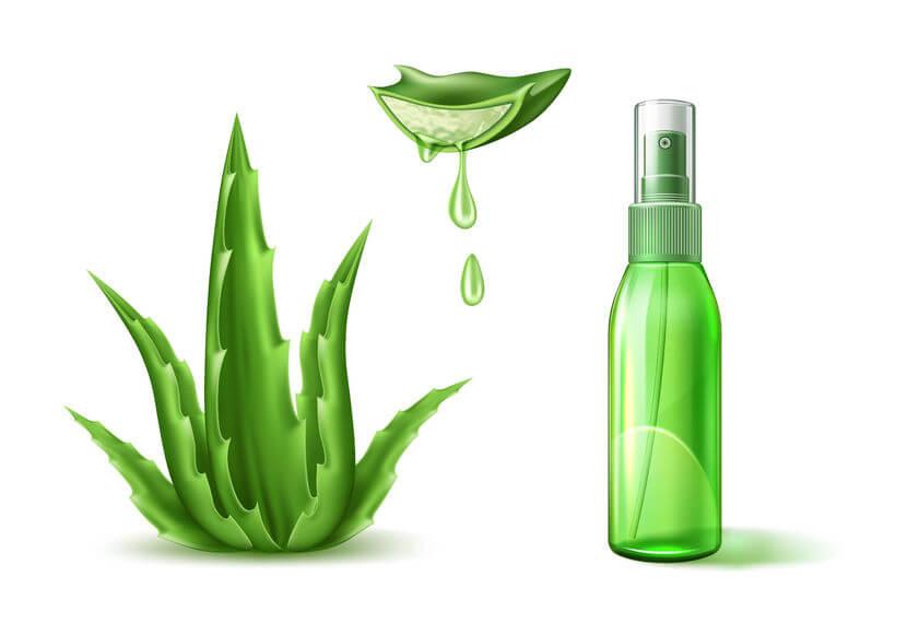 spray aloe vera contro pulci